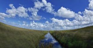 Traînées d'Airboat dans les marais de la Floride Image libre de droits