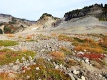 Traînées de Ridge de lagopède alpin avec des couleurs de chute Images libres de droits