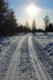Traînées de ski et empreinte de voie de bandes de roulement de chenille Images stock
