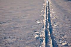 Traînées de ski de visite sur un champ photos libres de droits