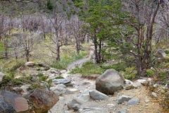 Traînez à Grey Hut en parc national de Torres del Paine, région de Magallanes, Chili du sud image libre de droits