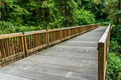 Traînez à l'intérieur de la forêt en parc d'état de déception de cap Washington Etats-Unis photographie stock