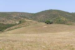 Traînez à la montagne avec les arbres et la végétation de Sobreiro photo libre de droits