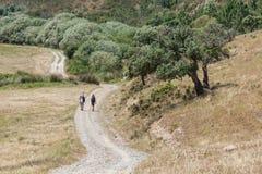 Traînez dans la ferme avec les arbres et la végétation de Sobreiro photographie stock libre de droits
