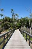 Traînez en Floride images libres de droits