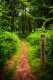 Traînez et traînez le courrier de marqueur en parc national de Shenandoah photos libres de droits