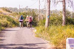 Traînez le flambage sur l'arbre, trois touristes augmentant la route goudronnée Photos libres de droits