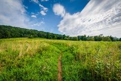 Traînez par un pré au briquet Gap, dans le pair de ressortissant de Shenandoah photographie stock libre de droits