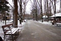 Traînez pour augmenter en parc pendant l'hiver photos libres de droits