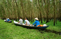 Tra Su indigo forest, Vietnam ecotourism. AN GIANG, VIET NAM- SEPT 22: Tra Su indigo forest, eco tourist area at Mekong Delta, traveler in green ecotourism stock photography