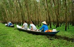 Tra Su indigoblå skog, Vietnam ecotourism Arkivbild