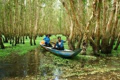 Tra Su indigoblå skog, Vietnam ecotourism Royaltyfri Foto
