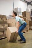 Trabajador con dolor de espalda mientras que levanta la caja en almacén Imagenes de archivo