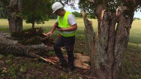 Trabajador con el árbol caido cercano de la tableta almacen de metraje de vídeo