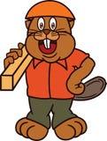 Carpintero del castor fotos de stock registrate gratis for Assurance autoconstruction castor