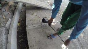 Trabajador de construcción que vierte el asfalto derretido caliente entre los bloques del empalme de camino almacen de metraje de vídeo