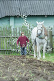 Trabajador de granja adolescente y caballo blanco durante el arado de un sólo lado tradicional Imagen de archivo libre de regalías