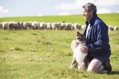 Trabajador de granja con la multitud de ovejas Fotos de archivo libres de regalías