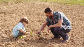 Trabajador de granja de Eco - concepto del padre y del hijo El padre lindo y el hijo que trabajan con perforan en campo de la pri almacen de metraje de vídeo