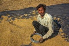 Trabajador de la agricultura imagenes de archivo