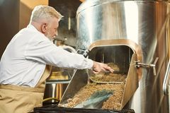 Trabajador de la cervecería que consigue el grano gastado con la pala imagen de archivo libre de regalías