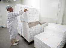 Trabajador de la conservación en cámara frigorífica Imágenes de archivo libres de regalías