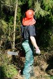 Trabajador de la silvicultura Foto de archivo