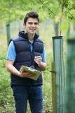 Trabajador de la silvicultura con el tablero que comprueba árboles jovenes Fotografía de archivo libre de regalías