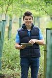 Trabajador de la silvicultura con la tableta de Digitaces que comprueba árboles jovenes Fotografía de archivo