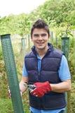 Trabajador de la silvicultura que cuida para los árboles jovenes Imagen de archivo libre de regalías