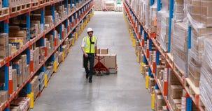 Trabajador de sexo masculino del almacén que usa el camión de plataforma almacen de video