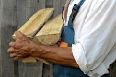 Trabajador de sexo masculino que sostiene una madera que taja grande Leña del abedul en sus manos empleados Imagenes de archivo