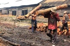 Trabajador del carbón de leña de madera del mangle Imagen de archivo libre de regalías