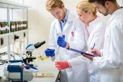 Trabajador del equipo en trabajo de laboratorio con el microscopio foto de archivo