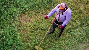 Trabajador del hombre del lawnmover de la visión superior que corta la hierba seca con el cortacésped almacen de video