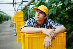 Trabajador del invernadero Imágenes de archivo libres de regalías