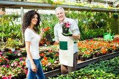 Trabajador del invernadero que da las plantas a un cliente Imágenes de archivo libres de regalías