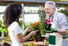 Trabajador del invernadero que habla con un cliente Imagen de archivo