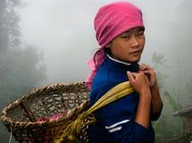 Trabajador del jardín de té de Lepcha Imagen de archivo libre de regalías