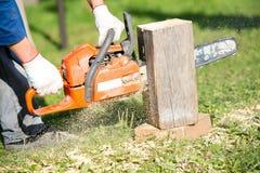 Trabajador del leñador con la madera del corte de la motosierra durante construcciones Imagen de archivo