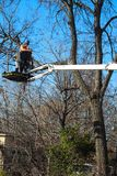 Trabajador en la grúa triming un árbol que mira abajo en Tulsa Oklahoma los E.E.U.U. 3 6 2018 fotografía de archivo libre de regalías