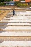 Trabajador en la producción de sal, Vietnam Fotos de archivo libres de regalías