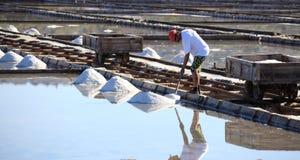 Trabajador que recolecta la sal Imágenes de archivo libres de regalías