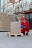 Trabajador que se agacha que controla la especificación Imagen de archivo libre de regalías