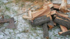 Trabajador que taja la madera al aire libre metrajes