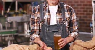 Trabajador sonriente de la cervecería que comprueba el producto almacen de metraje de vídeo