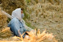 Trabajador tailandés del campo de trigo Imagenes de archivo