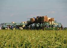 Trabajadores de granja Fotos de archivo libres de regalías
