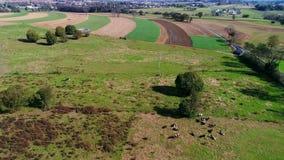 Trabajadores de granja de Amish que fertilizan orgánico allí campos según lo visto por un abejón almacen de metraje de vídeo