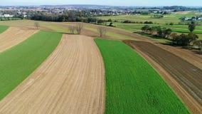 Trabajadores de granja de Amish que fertilizan orgánico allí campos según lo visto por un abejón metrajes
